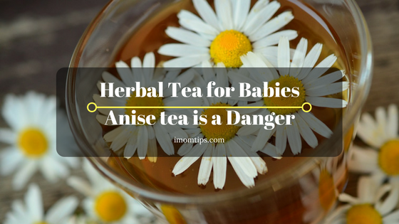 Herbal Tea for Babies Anise tea is a Danger
